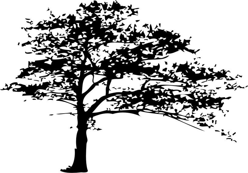 drzewo drx 15 welur naklejkolandia. Black Bedroom Furniture Sets. Home Design Ideas